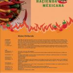 Haçienda Méxicana, Rezeptkalender Chilikunde