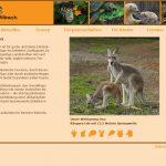 Wildpark Bibach
